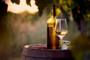 12 Best White Wines for Beginners to Try